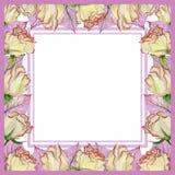 Belle frontière de ressort faite de fleurs et feuilles roses fraîches avec des veines Cadre rose carré avec le fond blanc pour un Images libres de droits