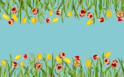 Belle frontière sans couture florale Tulipes rouges et jaunes avec les feuilles vertes dans la maquette lumineuse image stock