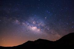 Belle galassia della Via Lattea e siluetta del pino sulla a vicino Fotografia Stock Libera da Diritti