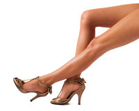 Belle gambe delle donne fotografia stock