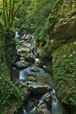 Belle gorge de Tolmin dans la partie slovène de Julian Alps image libre de droits