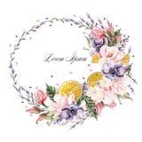 Belle guirlande d'aquarelle avec les fleurs de lavande, l'anémone, la magnolia et les fruits oranges Image libre de droits