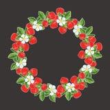 Belle guirlande de composition en fraises Photo libre de droits