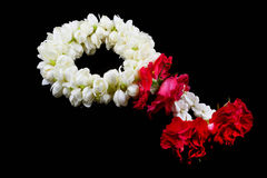 Belle guirlande de jasmin des fleurs Photos stock