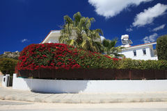 Belle haie de floraison autour de la villa image libre de droits