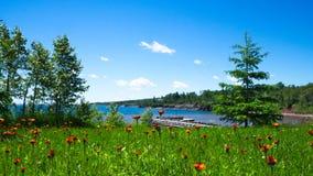 Belle horticulture sauvage près du rivage du nord du grand lac Supérieur images libres de droits