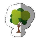belle icône d'arbre de timbre Image libre de droits