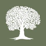 Belle icône de silhouette d'arbre pour des sites Web Photos stock
