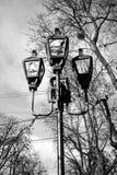Belle iluminazioni pubbliche sui precedenti del cielo Fotografie Stock