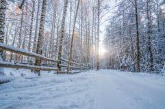 Belle image de l'hiver landscape Photographie stock libre de droits