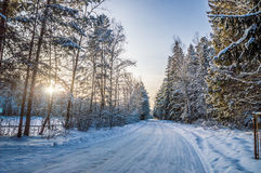 Belle image de l'hiver landscape Photos stock