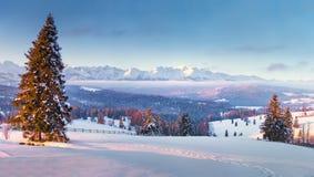 Belle image de l'hiver landscape Zakopane, Pologne photos stock