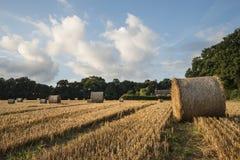 Belle image de paysage de campagne des balles de foin dans le fie d'été Photo libre de droits