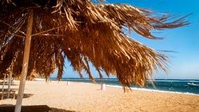 Belle image des umrellas du soleil sur la plage au jour venteux ensoleill? lumineux photos stock