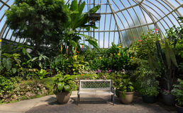 Belle Isle Conservatory. Detroit Michigan royalty free stock image