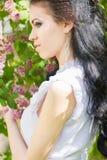 Belle jeune brune posant en nature Images stock