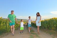 Belle jeune famille marchant main dans la main dans le domaine de tournesol Photographie stock libre de droits