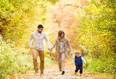 Belle jeune famille sur une promenade dans la forêt d'automne photo libre de droits