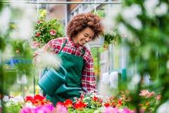 Belle jeune femme arrosant de diverses plantes d'intérieur mises en pot photographie stock libre de droits