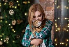 Belle jeune femme avec le chat mignon près de l'arbre à la maison Image libre de droits