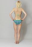Belle jeune femme dans le bikini Image stock