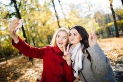 Belle jeune femme deux prenant le selfie en parc de jour d'automne Photographie stock