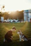 Belle jeune femme jouant avec le chien enroué drôle dehors en parc au coucher du soleil ou au lever de soleil Images stock
