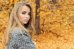 Belle jeune fille attirante avec du charme avec de grands yeux bleus, avec de longs cheveux foncés dans la forêt d'automne dans l Images libres de droits
