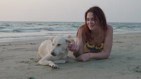 Belle jeune fille dans un maillot de bain frottant un chien blanc sur la plage un jour d'été 4K banque de vidéos