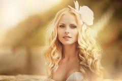 Belle jeune mariée images libres de droits