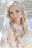 Belle jeune mariée avec le voile de mode sur la coiffure de mariage closeup images stock