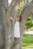 Belle jeune mariée dans un arbre Photos libres de droits