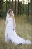 Belle jeune mariée dans un arrangement extérieur naturel image stock