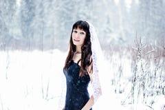 Belle jeune mariée sous le voile sur le fond blanc de neige Photos libres de droits