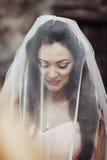 Belle jeune mariée sensuelle de brune souriant et se cachant sous le son VE Photos stock