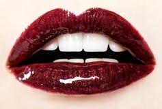 Belle labbra lucide rosse Fotografia Stock