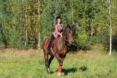 Belle longue jeune femme de cheveux montant un cheval Photo stock