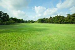 Belle lumière de matin en parc public avec le champ d'herbe verte Image libre de droits