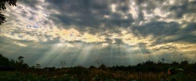 Belle lumière du soleil Photos stock