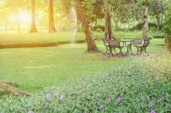 Belle lumi?re de matin en parc public photos stock
