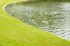Belle lumi?re de matin en parc public images stock