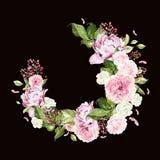 Belle, lumineuse guirlande d'aquarelle avec des roses, pivoine et baie Photographie stock libre de droits