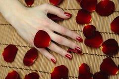 Belle main avec la manucure de rouge de clou Image libre de droits