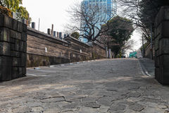 Belle manière de marche à Tokyo Japon le 31 mars 2017 Images stock