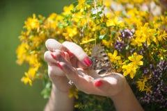 Belle mani con la farfalla Fotografia Stock Libera da Diritti