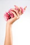 Belle mani della donna Fotografie Stock