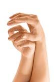 Belle mani della donna isolate su priorità bassa bianca Fotografia Stock
