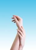 Belle mani femminili Fotografie Stock