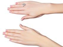 Belle mani femminili. Fotografie Stock Libere da Diritti