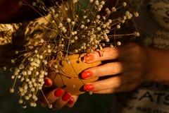 Belle mani femminili con un mazzo dei wildflowers Fotografia Stock Libera da Diritti